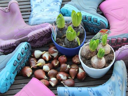 wir bepflanzen gummistiefel und begr en den fr hling mit den kindern durchs gartenjahr. Black Bedroom Furniture Sets. Home Design Ideas