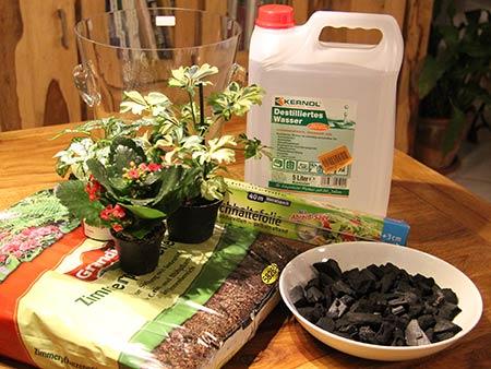 Holzkohle, Blumenerde, Pflänzchen, gläserner Sektkühler und Frischhaltefolie bilder das Ausgangsmaterialen für den kleinen Wasserkreislauf