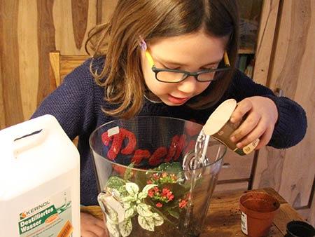 Kind gießt vorsichtig destilliertes Wasser in den bepflanzten Sektküher.